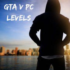 GTA Levels